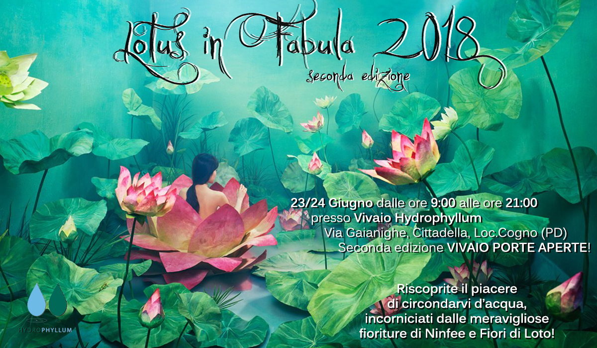 Lotus in Fabula 2018