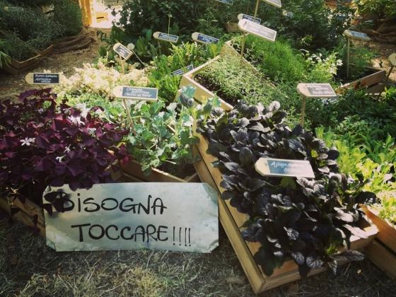 GEEL Floricultura